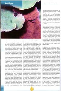 p.3-201x300